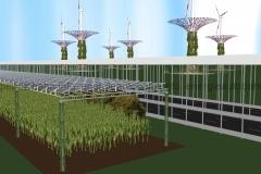 Schema: Vogelperspektive Energieautobahn und AGRO-Fläche